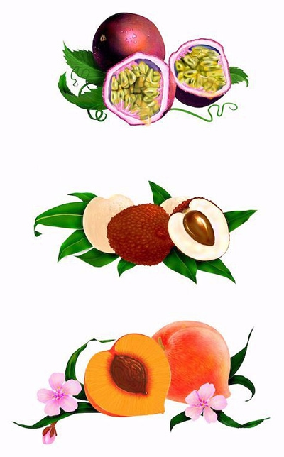 3 Fruit illustrations