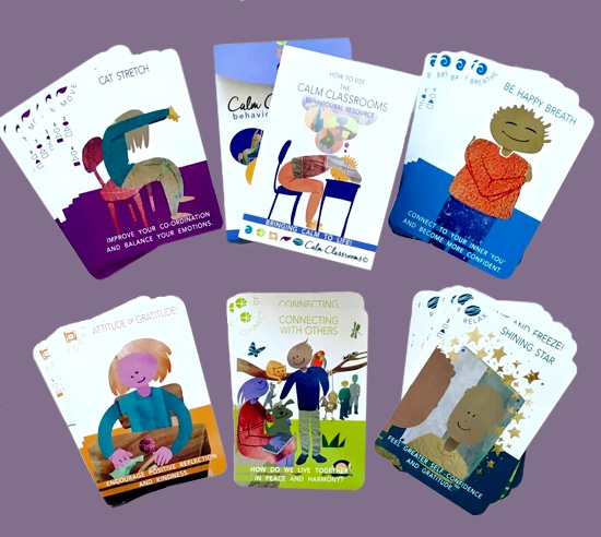 Classroom materials: pic of box and cards
