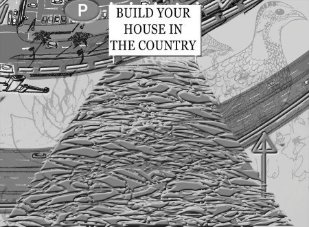 build your house in the country